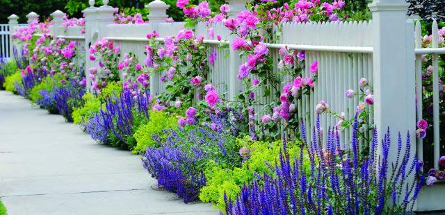 Garden/Flower Kits